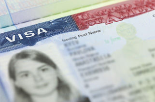 U.S. Non-Immigrant Visas